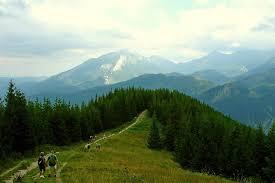 ścieżka na Gęsią Szyję, szlak w Tatrach